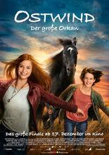 Movie poster Wicher 5